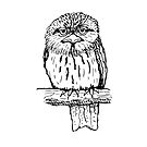 Tawny Frogmouth - Raising funds for BirdLife Australia by Paula Peeters