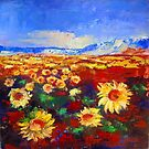Sunflowers field by Elise Palmigiani