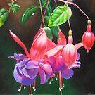 Fuchsia ballerinas by lanadi