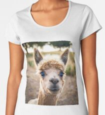 Meet Ollie Premium Scoop T-Shirt