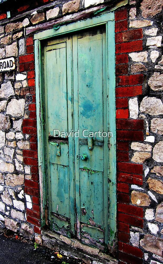 Behind the Green Door by David Carton