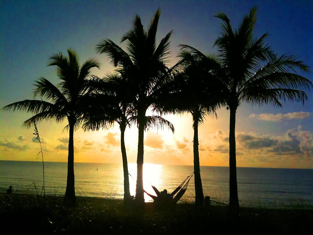 Hammock at sunrise by Tropical Sun