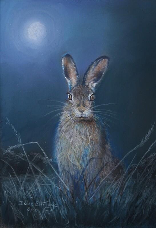 Quot Hare In Moonlight Quot By Graham Ettridge Redbubble