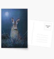 Hare in moonlight Postcards