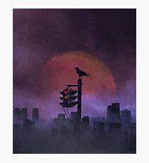 The Raven Photographic Print