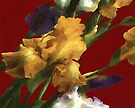 Iris in the Rough by RC deWinter