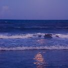 Full Moon over the Ocean by Susanne Van Hulst