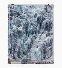 Fox Glacier iPad Case/Skin