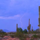 Southwest Sonoran Desert Lightning Strike by Bo Insogna