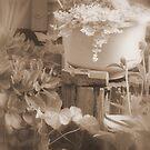 Memories of Grandma's Garden by Journeysinphoto