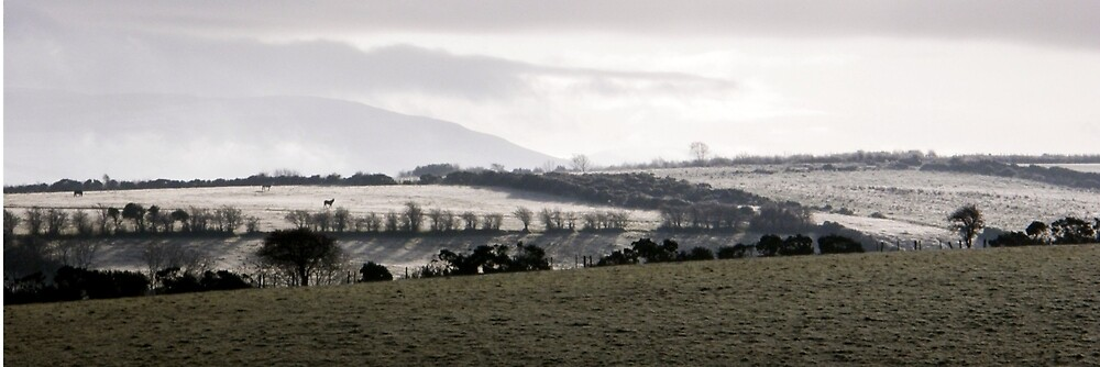 Fields  of Mist - Derry, Ireland by mikequigley