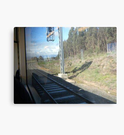 View from a speeding train Metal Print