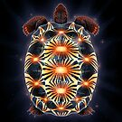 Radiated Tortoise by Tami Wicinas