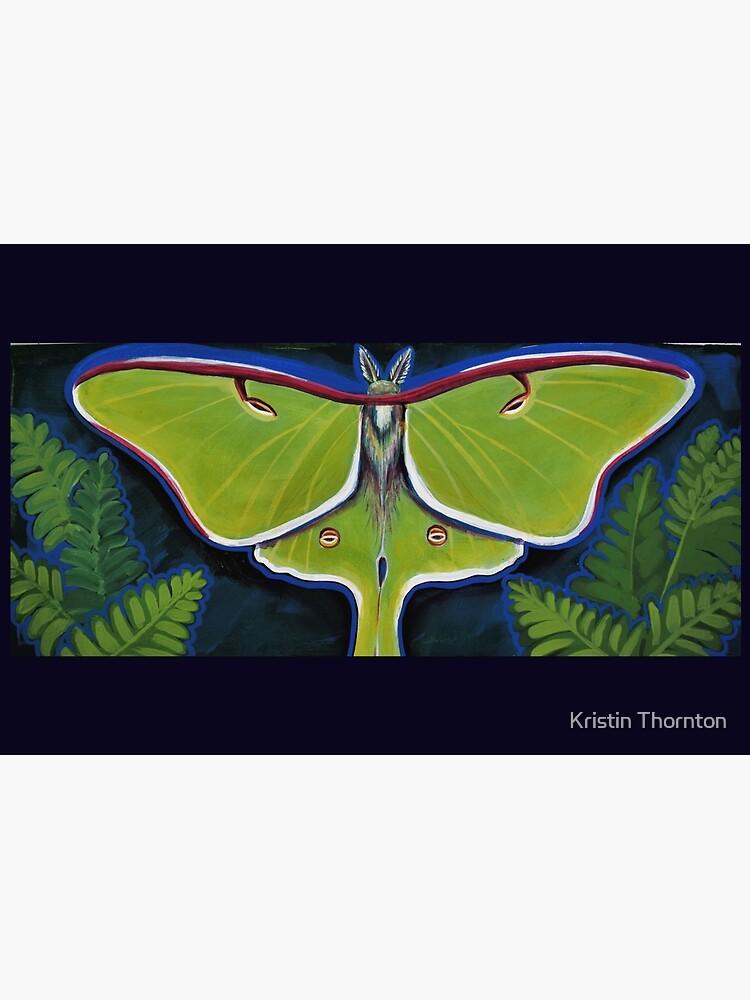Luna Moth by kristinthornton