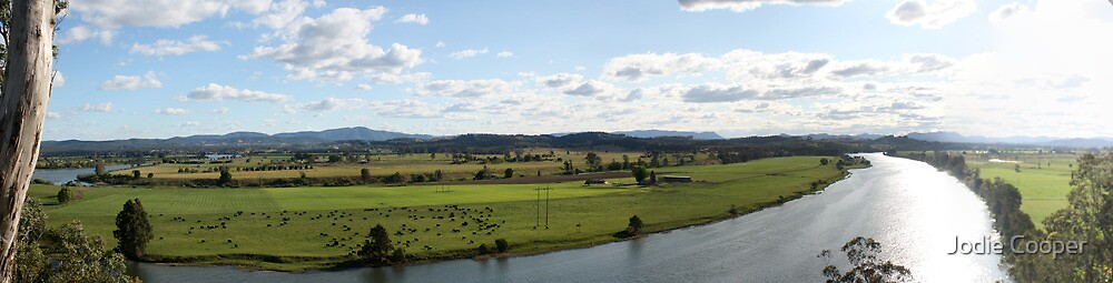 Taree Lookout by Jodie Cooper