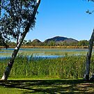 Lake, Kununurra, Western Australia. by johnrf