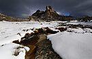 Buffalo's Hump in Winter Light by Robert Mullner