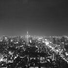 Tokyo at night by Sam Ryan