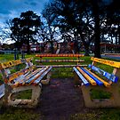 Park Benches by Andre van Eyssen
