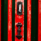 Red Door by Andre van Eyssen