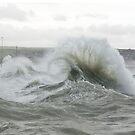 Curling Wave Spray im Hafen von Newhaven von Sue Robinson