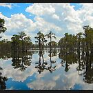 Lakeland Reflections II by Procuras