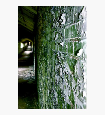 West Park - Green Photographic Print