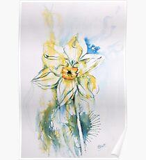 Daffodil Dance Poster