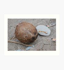 Coconuts Migrate? Art Print