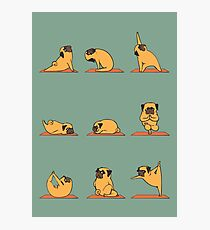Lámina fotográfica Yoga pug