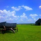 Home on the Range... by Clayton  Turner
