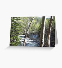Glacier Creek, Rocky Mountains Colorado Greeting Card