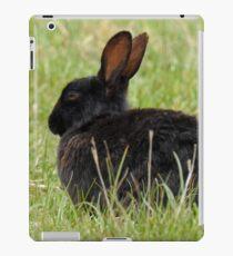 Schwarzes Häschen iPad-Hülle & Klebefolie