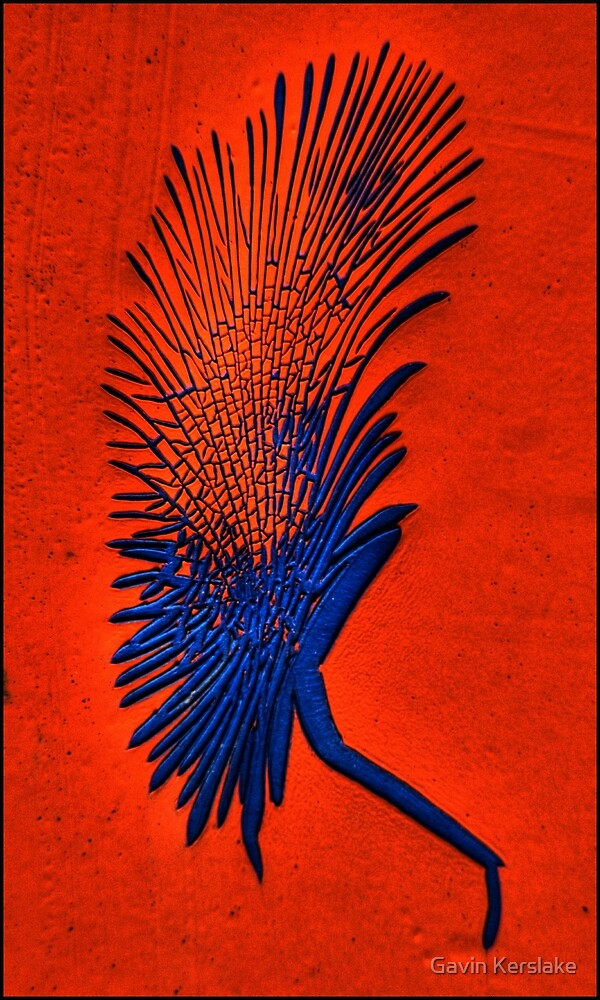 Can Can Dancer by Gavin Kerslake