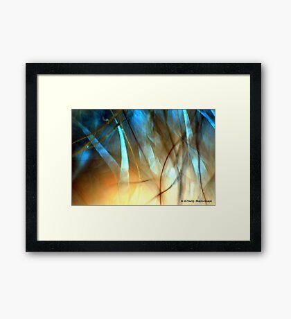 Shinning Lights in Night Sky Framed Print