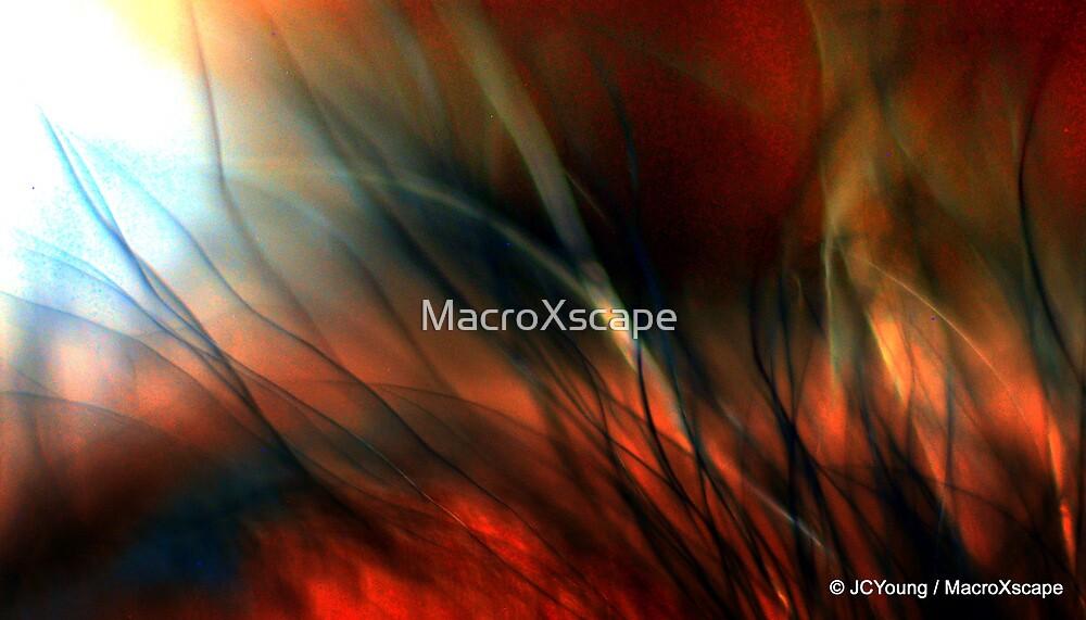 Raging Fire by MacroXscape