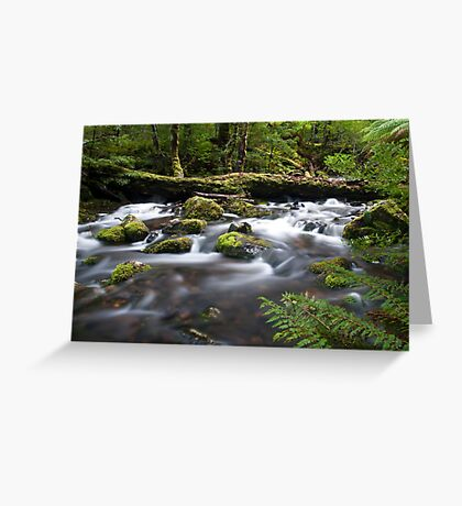 Day at Dove River Greeting Card
