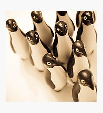 March of the penguins Photographic Print