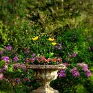 In the Garden by Monica M. Scanlan