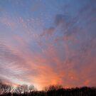 Multi-color sunset by Elena Skvortsova
