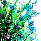 Flower Fields by Linda Callaghan