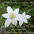I wish you a nice day by Ana Belaj
