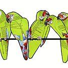 Military macaws by Ruud van Koningsbrugge