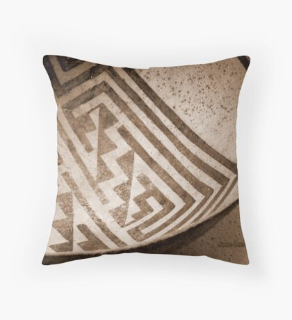 Vessel From The Past Throw Pillow