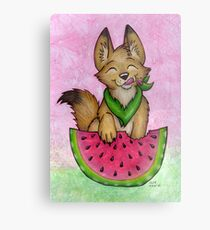 Melon Coyote - A Summertime Treat! Metal Print