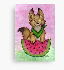 Melon Coyote - A Summertime Treat! Canvas Print