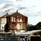 Rusty Water Towers by Colleen Drew