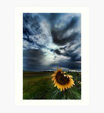 Summer Storm, Allora, Queensland Art Print