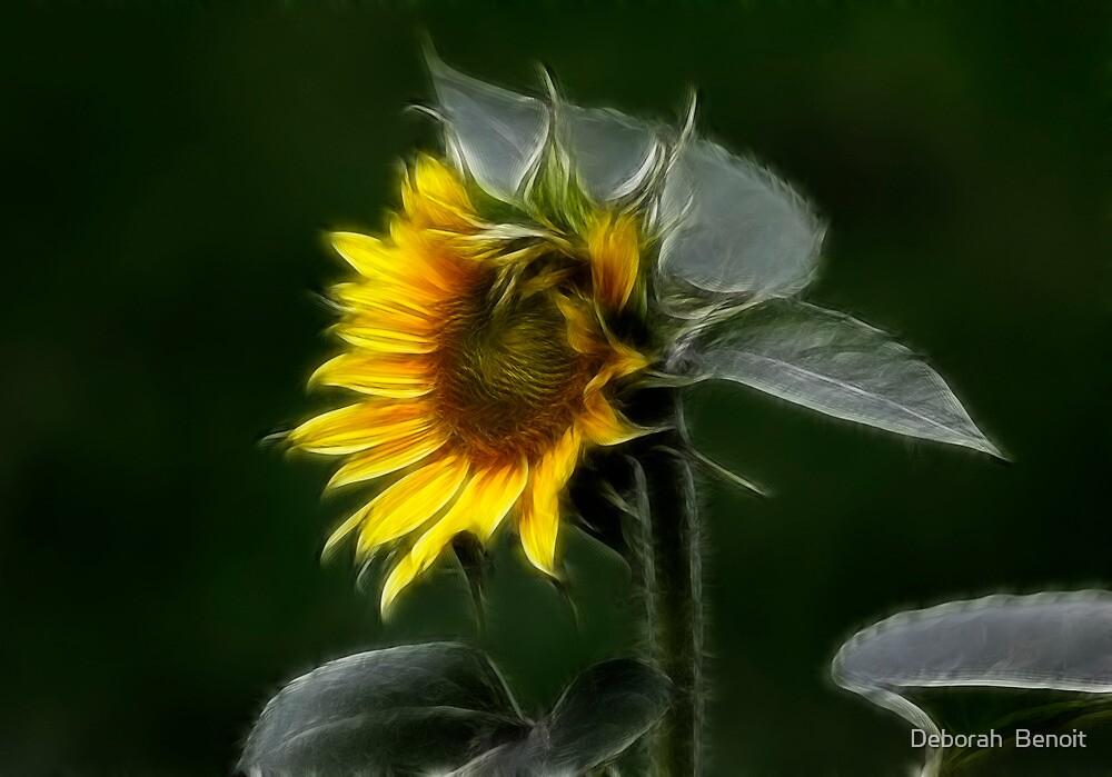 Sunflower Fractalius Beauty by Deborah  Benoit