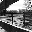 Horse enclosure by DearMsWildOne